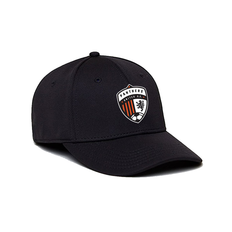 Panthers United Logo Performance Flex Fit Hat